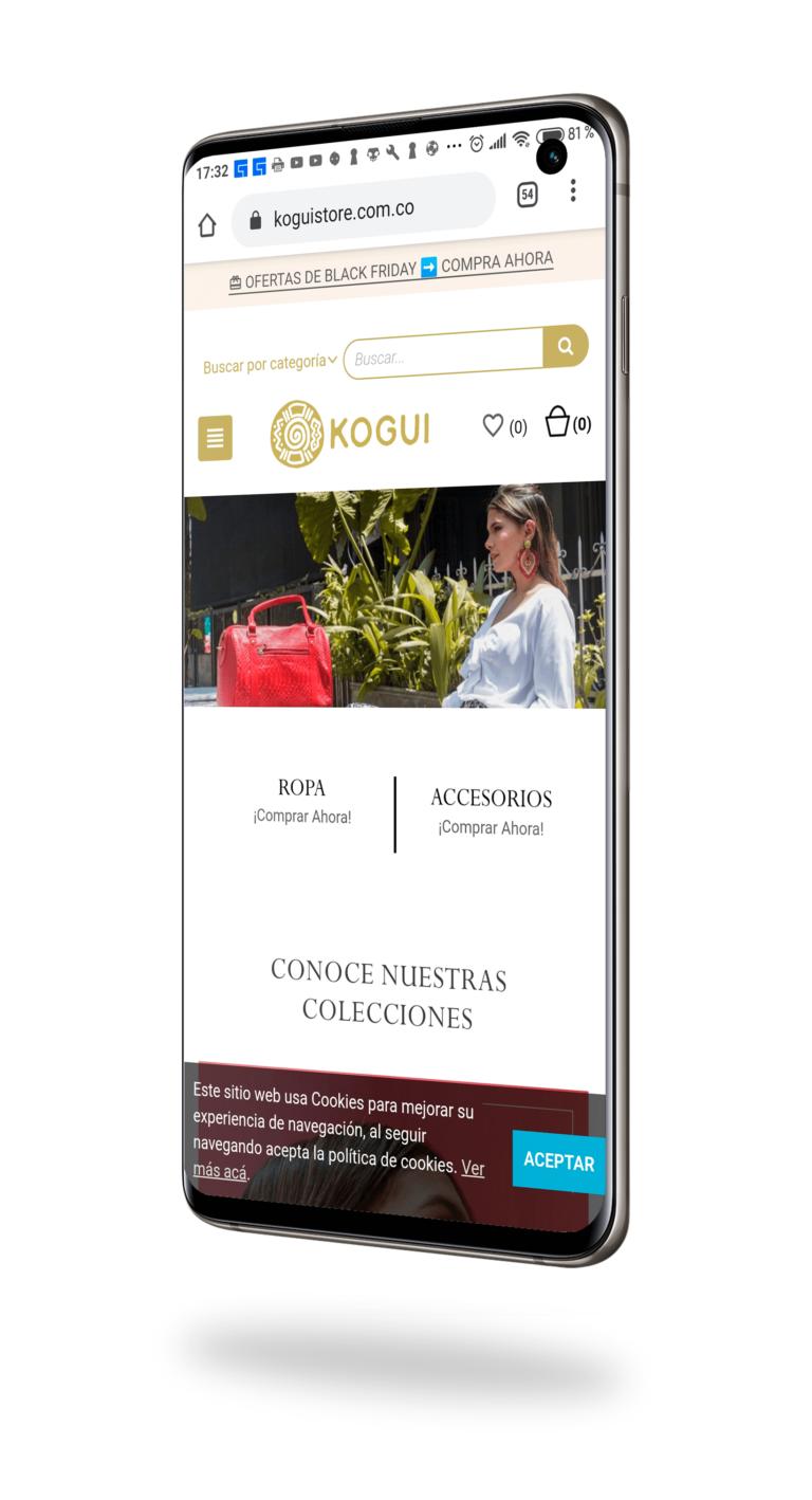 Desarrollo y diseño de paginas web